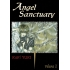 Angel Sanctuary - Komplet 1-10 + gratis