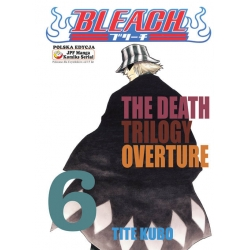 Bleach tom 06